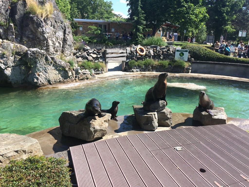 Köln Zoo Avrupa'nın Ortası: Köln