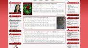 Intranet-12 İntranet – Portal Nedir? Olması gerekenler