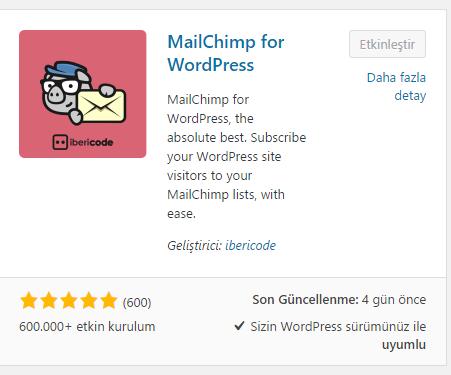 mailchimp5 Ücretsiz Mailing Servisi MailChimp ve WordPress Entegrasyonu