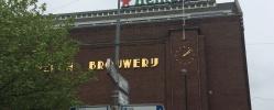 IMG_4986 Özgürlükler Şehri Amsterdam ve Mimarinin Başkenti Rotterdam