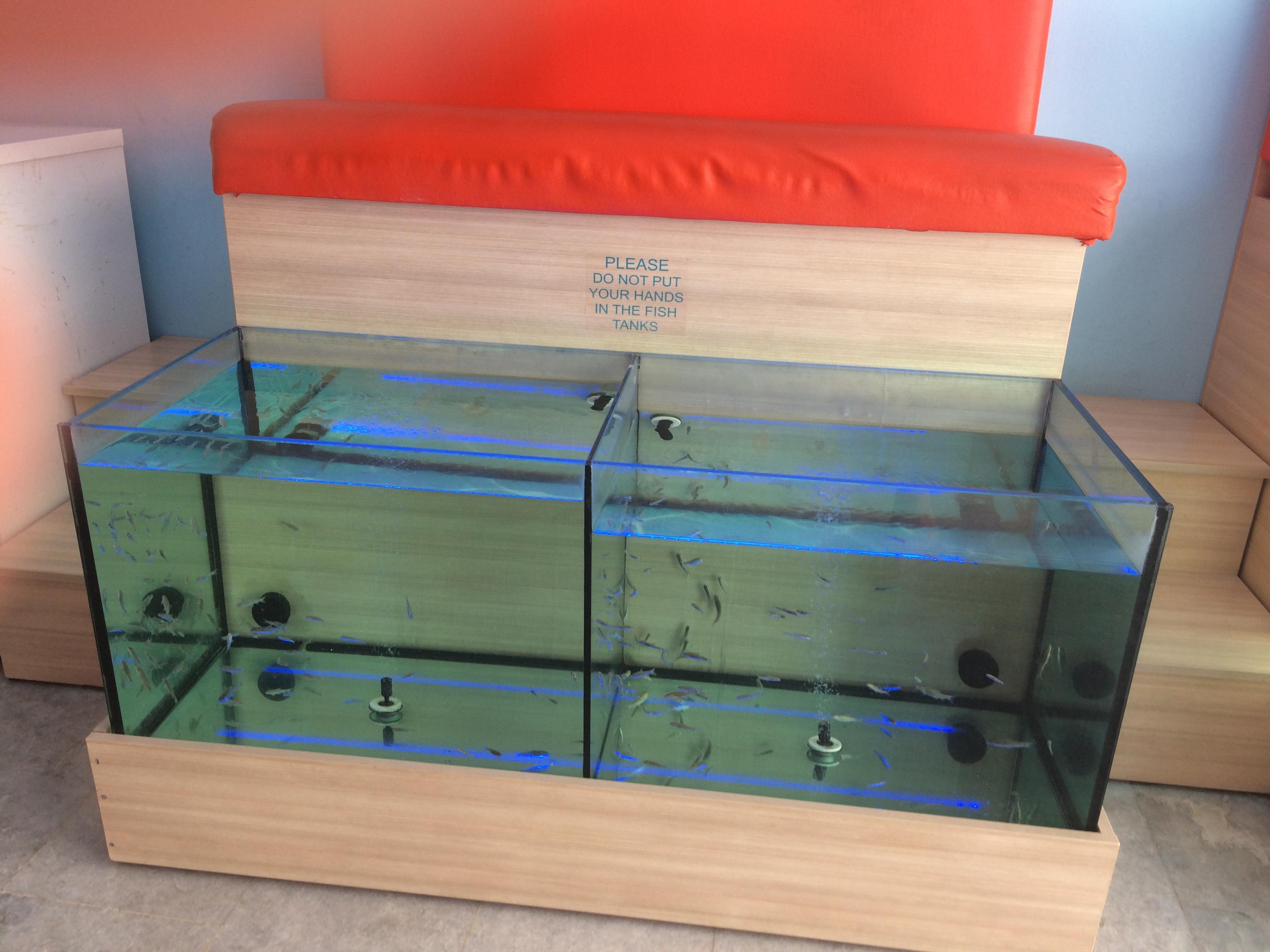 Evexis Fish Spa Bodrum'un Karşısındaki Avrupa Kos Adası – İstanköy
