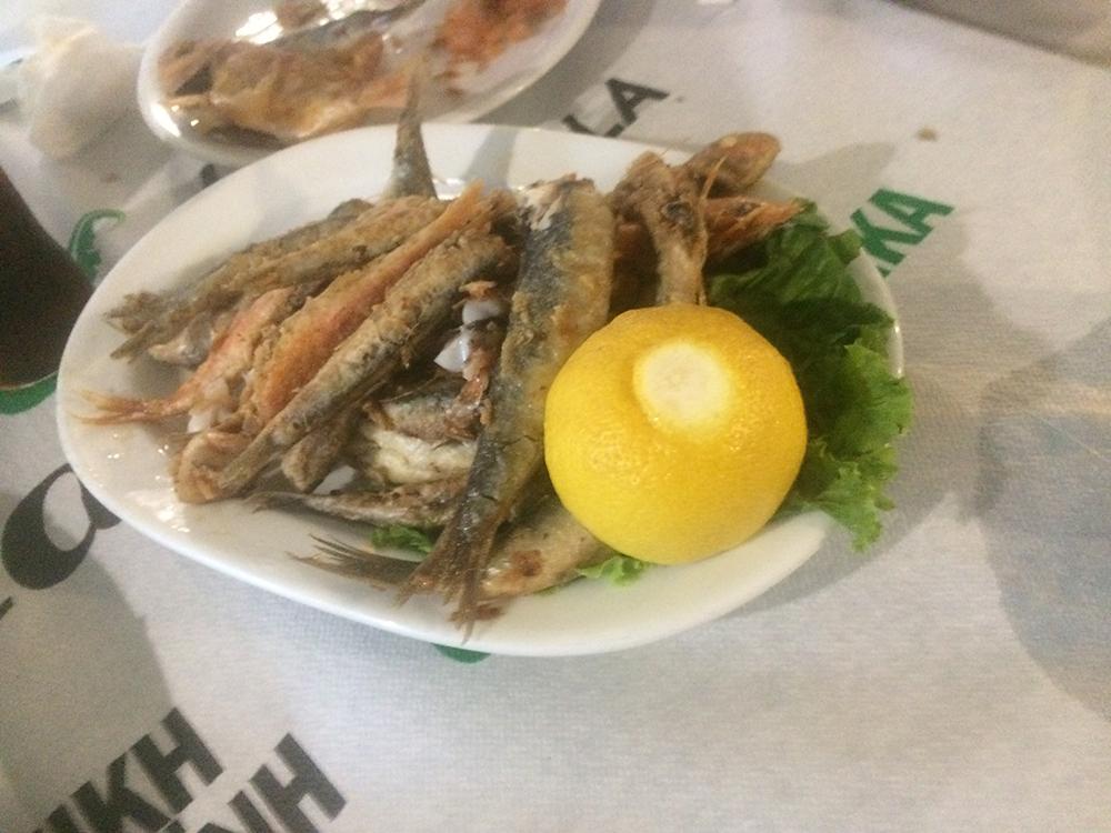 Balık Tabağı Günübirlik Yunan Havası – Aleksandropoli (Dedeağaç)